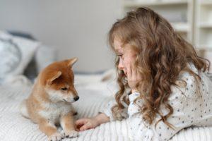 Hond in huis halen tijdens Corona crisis kan heel mooi zijn. Doe dit wel verantwoord